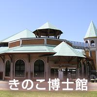 きのこ博士館